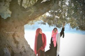 Sy mengambil kesempatan bergambar di bawah pohon zaitun yg diberkati.. ada 3 pohon semuanya.. Kesemua pohon zaitun ini hidup dlm masjid kawasan masjid Aqsa..